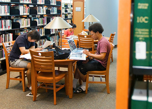 Students Studying in Charleston Campus Library